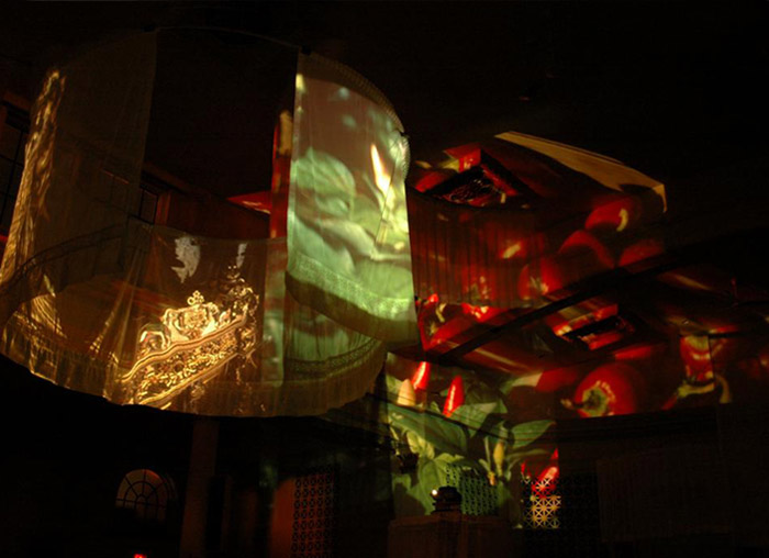 John Shipman, random found slides projected on transparent screens, 2008